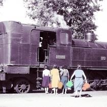 Diàlegs en línia: La Renfe des de dins. Dona i ferrocarril, 28 de maig